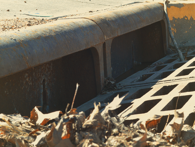 Help Keep Your Storm Drains Clear