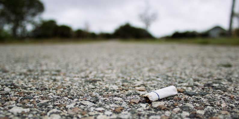 Council Members Discuss a Tobacco Ban at City Parks