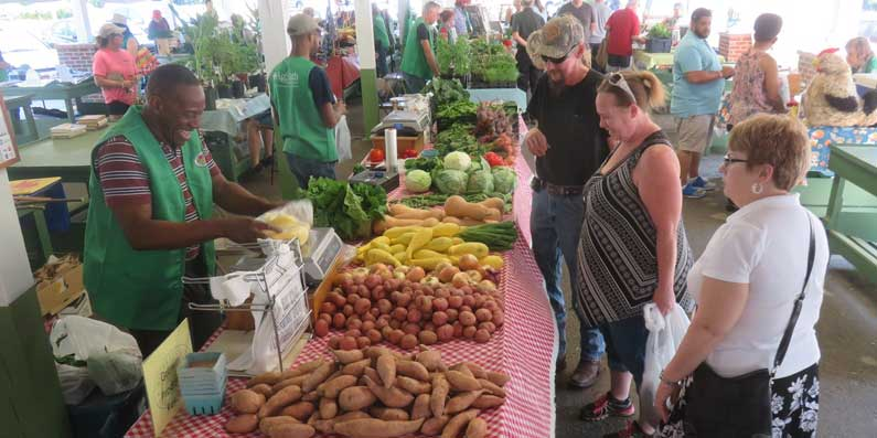 Full Bloom For Produce At The Aiken County Farmers Market and In The Downtown Alley