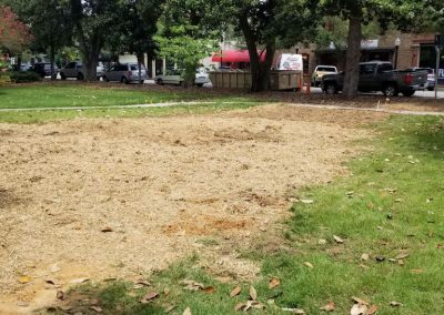 Park Ave STA. 13+50 – Temporary grass and mulch on disturbed area for water main installation (07/31/18).