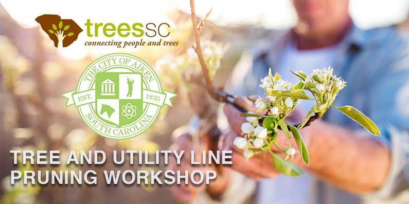 Trees SC and the City of Aiken Host a Tree and Utility Line Pruning Workshop